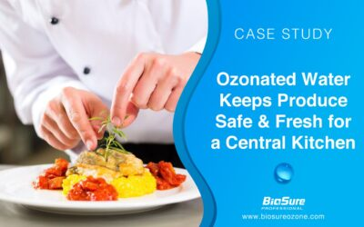 Ozonated Water Helps a Central Kitchen Deliver Fresher and Safer Produce