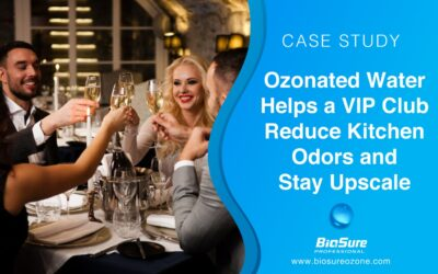 Ozonated Water Helps Luxury VIP Club Reduce Kitchen Odors and Stay Upscale